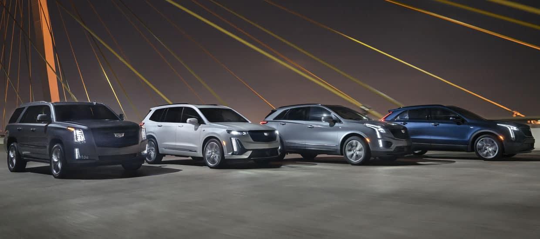 Lineup of Cadillacs