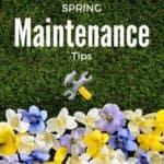 spring-tips