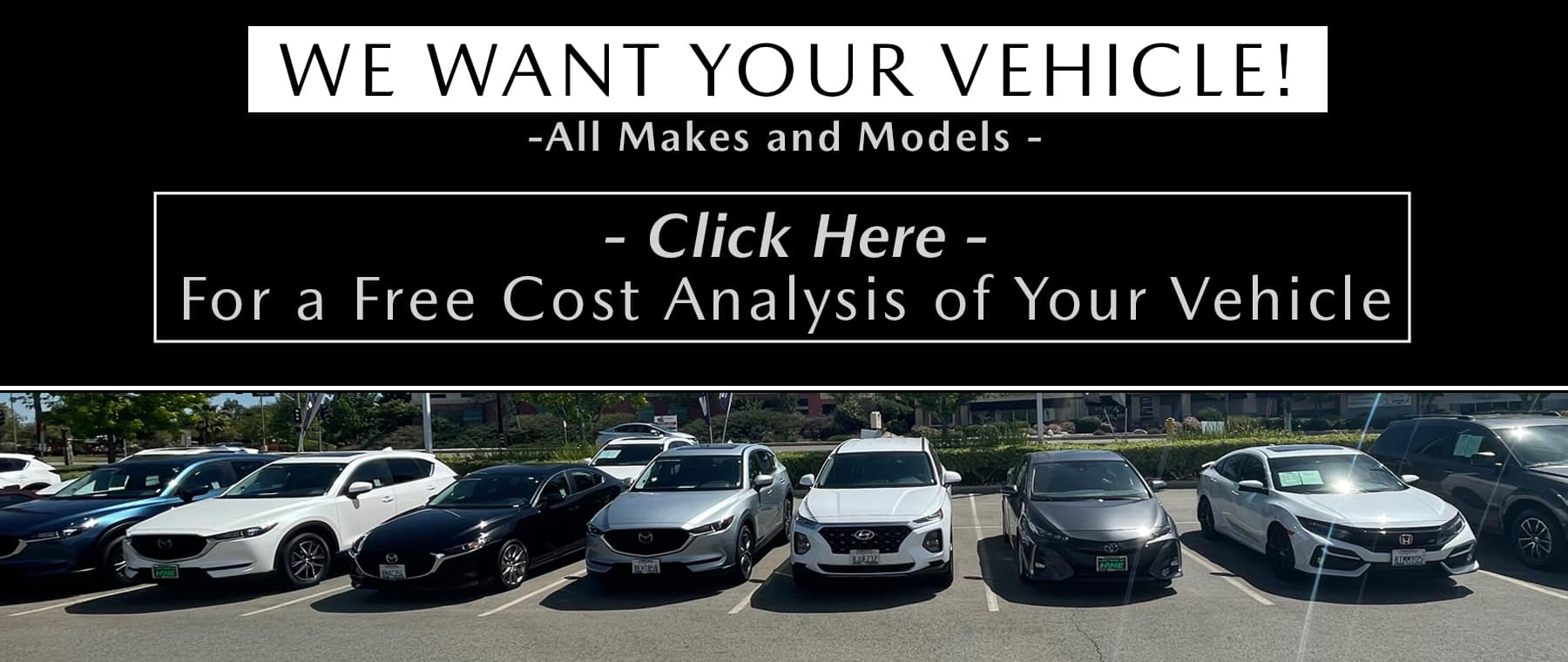 We Want Your Vehicle Home Page copy