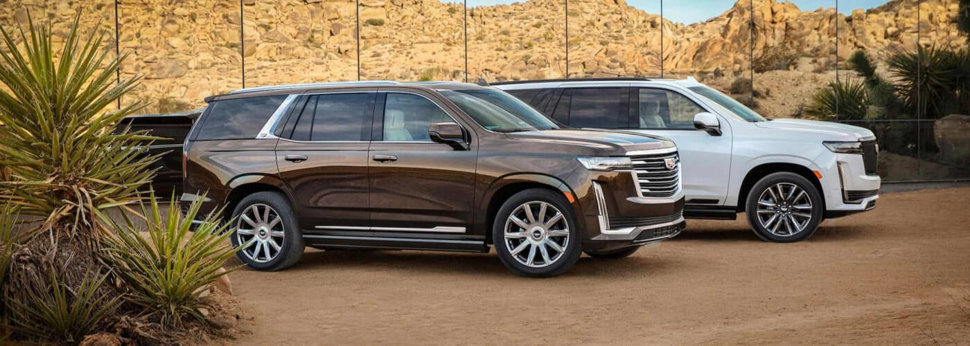 2021 Cadillac vehicles parked on the sand