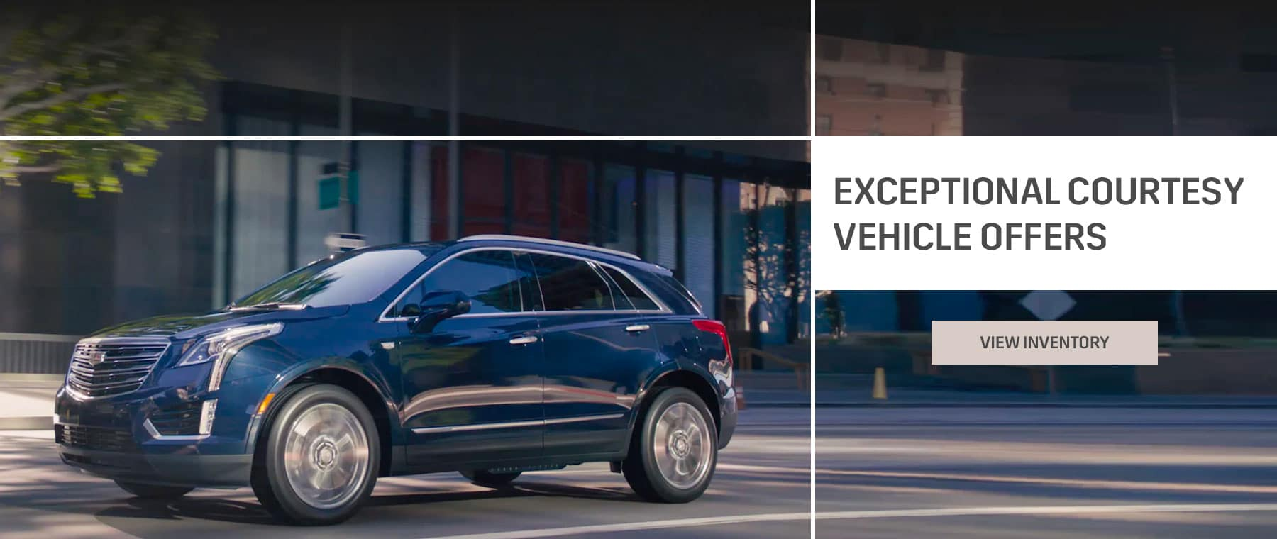 Exceptional Courtesy Vehicle Offers